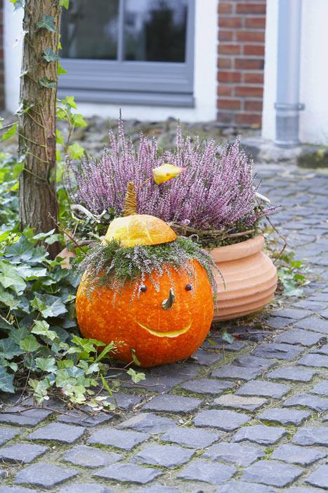 Heide zu halloween heidetrends - Herbstdeko mit erika ...