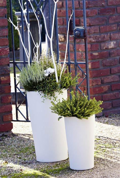 Moderne Bepflanzung Fur Terrasse Und Garten Heidetrends